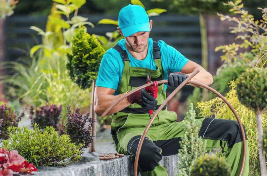 Diseño de jardines y sistemas de riego