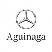 Mercedes Aguinaga